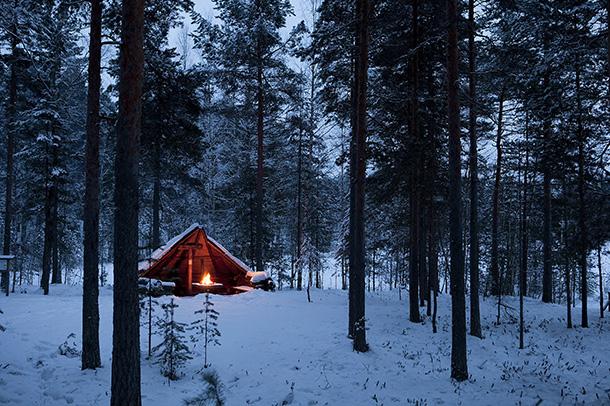 Kuva: Marko Hämäläinen