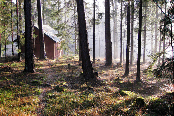 Kuva: Marko Leppänen