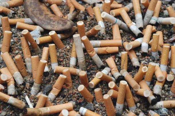 Tupakan Filtteri