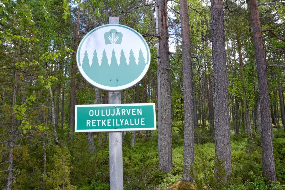 Metsähallituksen luontolahja  Oulujärven ikimetsät hakataan  e0a86dd325