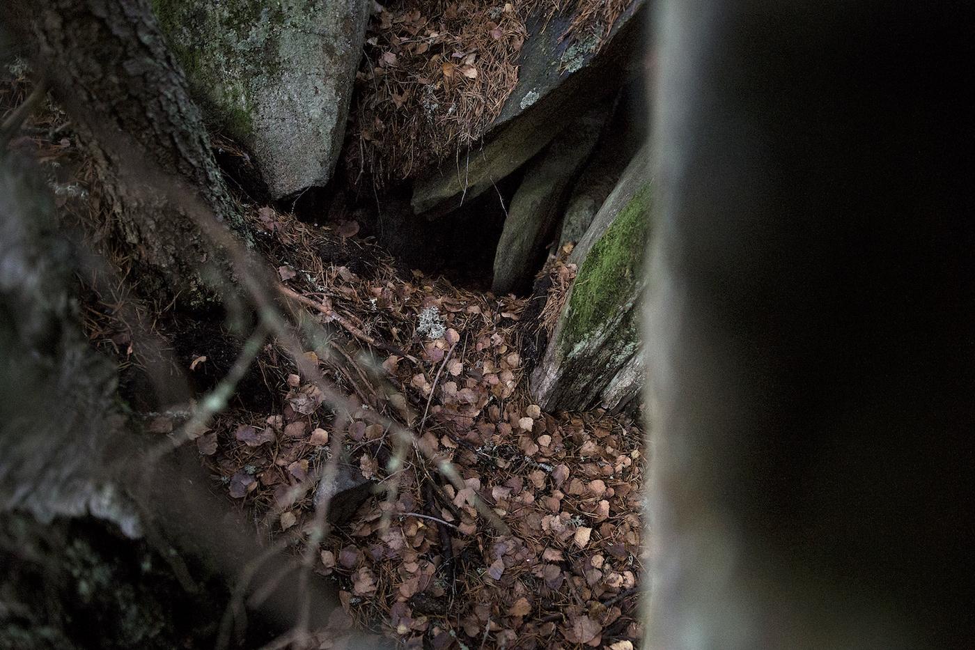 suden vanha pesä kallionkolossa
